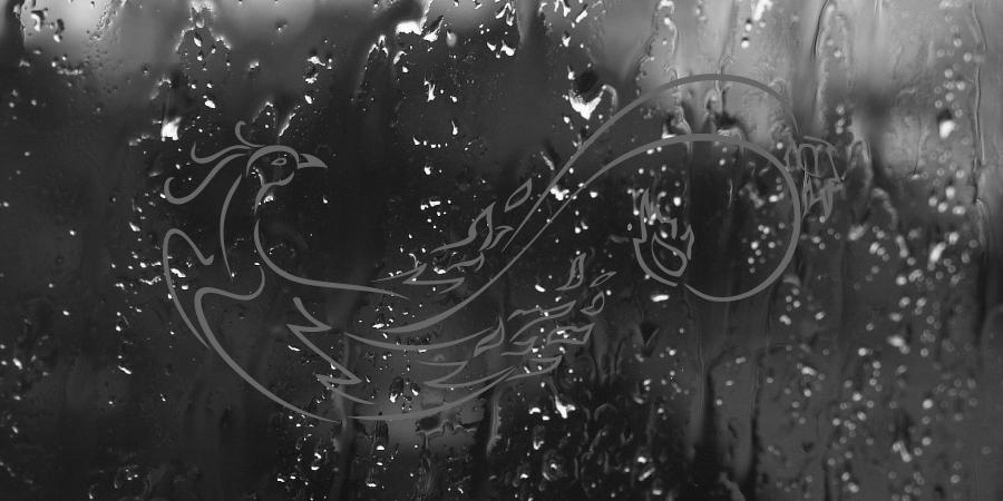rain-phoenix