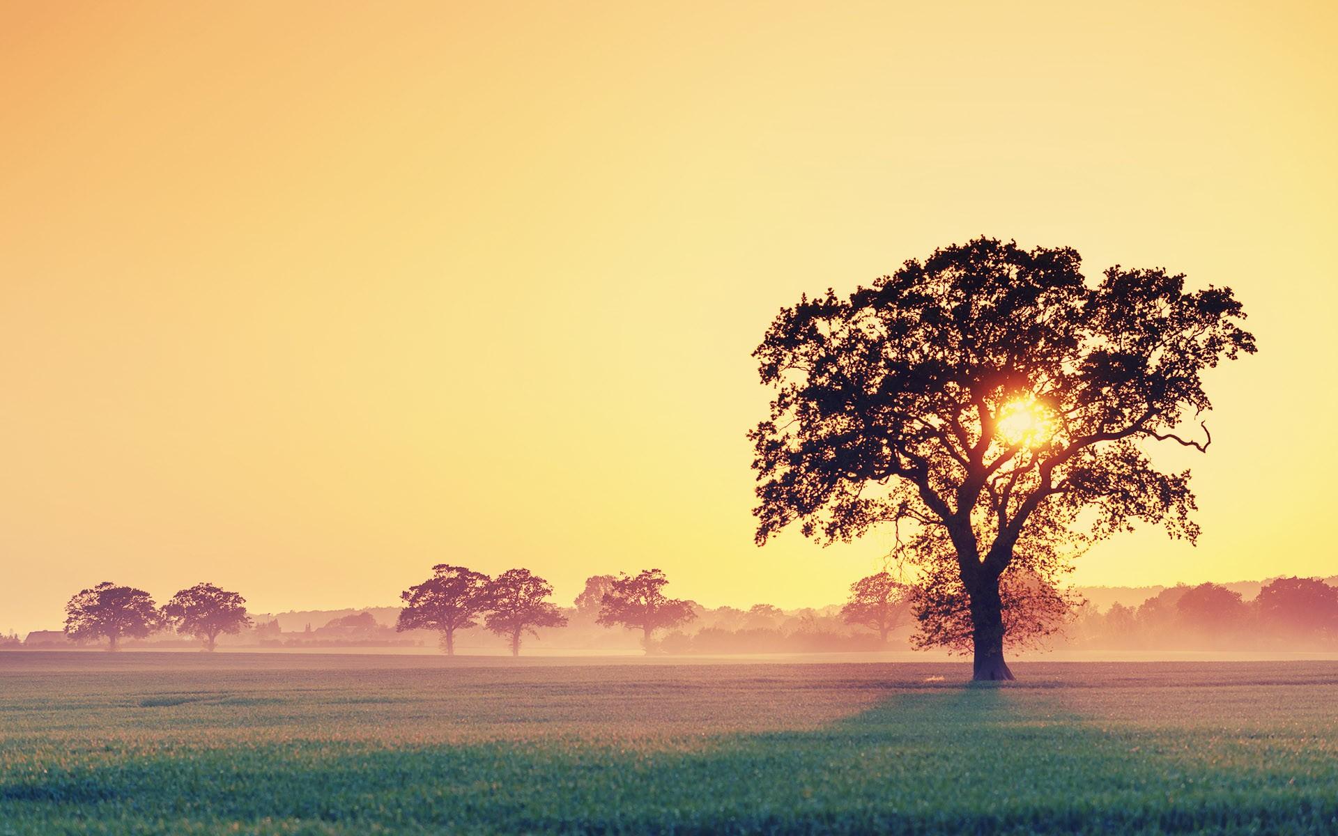 september, sunset