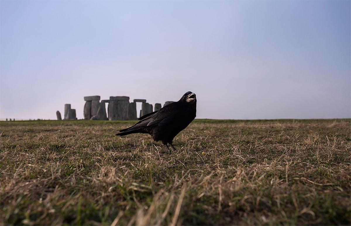 corvo-stonehenge